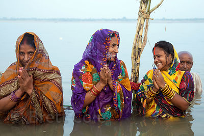 Ladies pray in the Ganges River during Chhath Puja, Varanasi, India. Chhath Puja is a devotion to the Sun God Surya in which ...