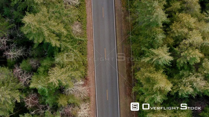 Top Down View to Long Country Road Infinity View. Pacific Northwest