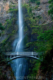 Multnomah Falls Bridge