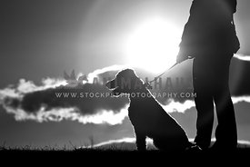 Silhouette of woman and dog on leash