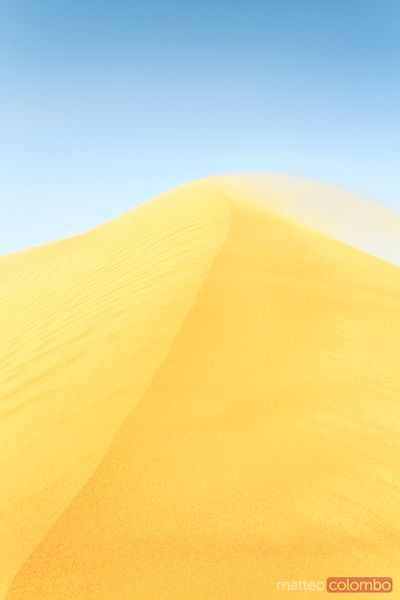 Windswept sand dune in the desert, Abu Dhabi, UAE