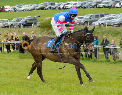 QUEEN OLVIVA (Sam Davies-Thomas) - Race 2 - The Quorn Point-to-Point 2017