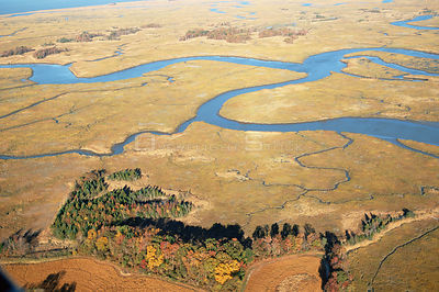 Aerial view of saltmarsh in autumn, Delaware Bay, New Jersey, USA
