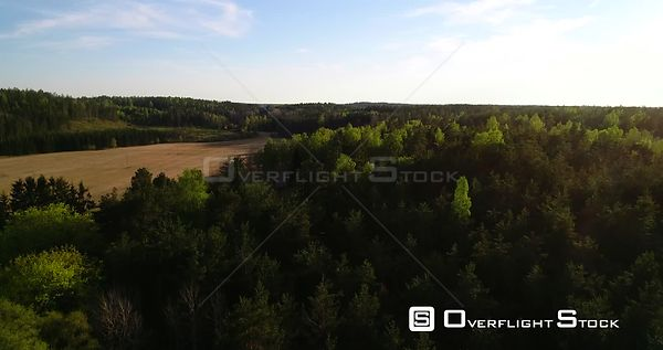Spring Forest, Aerial Rising View Over Light Green Gold of Finland, on a Sunny Summer Evening Dawn, in Varsinaissuomi, Suomi