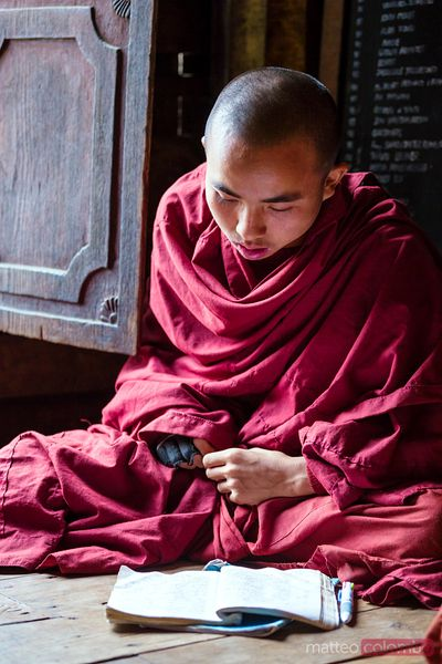Young burmese monk reading, inside a monastery, Myanmar