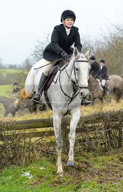 Margo Sly jumping the hunt jump at Newbold - The Fitzwilliam Hunt visit the Cottesmore at Burrough House