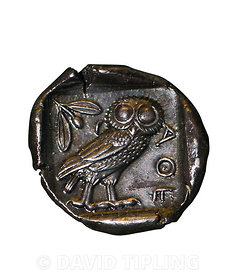 Greek coin depicting Little Owl