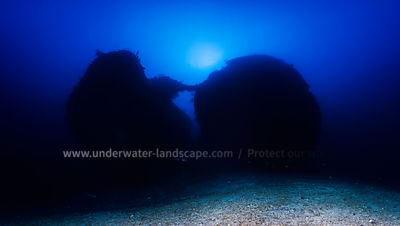 Panoramic view at 100 meters depth