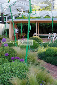 Ball shaped, Buxus, Contemporary garden, Digital, Garden furniture, Sphere shaped, Topiary, Umbrella, Common Box