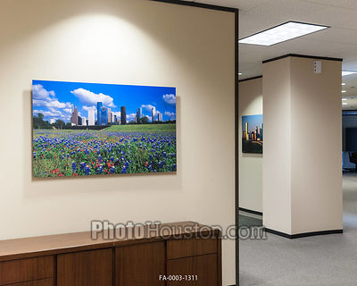 Color photography displayed as office art with float frames