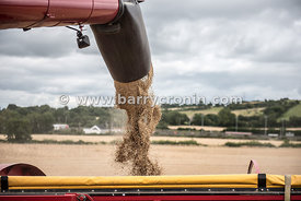 30th July, 2015.Cutting winter barley at Smarmier, County Louth is Pat McGuinness of Richardstown with Combine drivers Dennis...