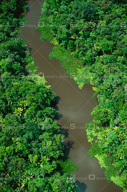 River in Amazon Estuary Rainforest Brazil