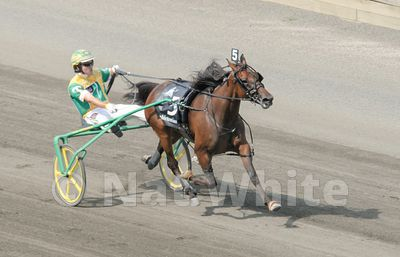 Hambletonian-_August_07_2010_