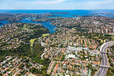 Cammeray to Sydney Heads