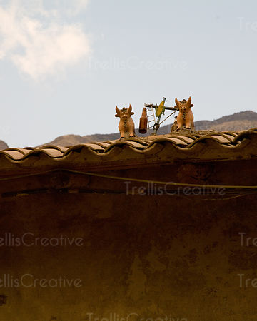 Homes throughout Cuzco and the Sacred Valley have animal and plant ornaments and holy water on the roofs as holy offerings fo...