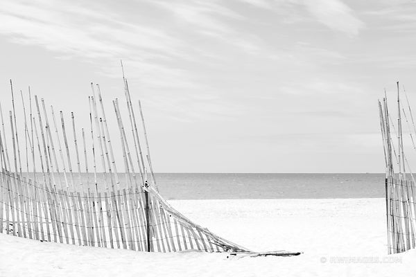SOUTHAMPTON LONG ISLAND BEACH FENCE BLACK AND WHITE