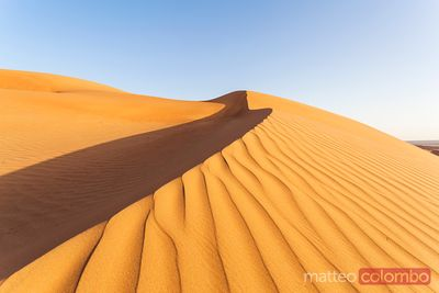 Sand dunes at sunset, Wahiba sands, Oman