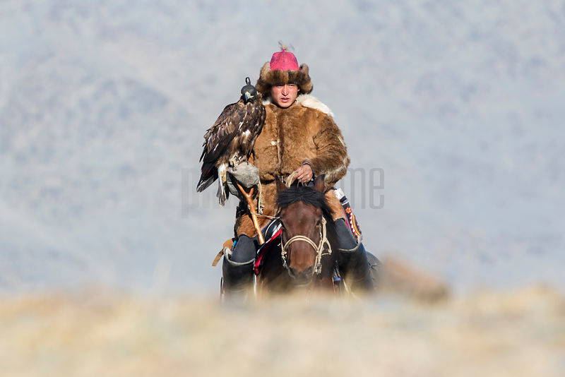 Mongolia Golden Eagle Festival, Oct 2018