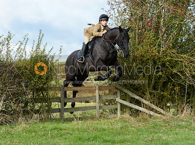 Emily Spence jumping a hedge near Little Dalby. Quorn Hunt Opening Meet 2018