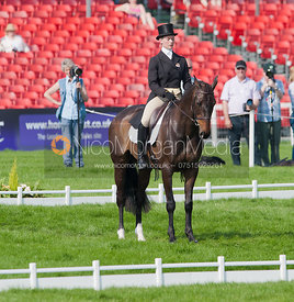 Lauren Shannon and Quixotic - Dressage.