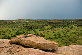 Trees dot the plain below Mapungubwe Hill, site of the capital of the earliest known kingdom in sub-Saharan Africa that flour...
