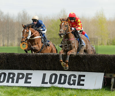 WITHER OR NOT (Dale Peters) - Race 1 Club Members - South Notts Point-to-Point 2017