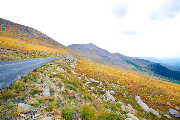 FALL TUNDRA COLORS MOUNT EVANS ROAD SCENIC BYWAY ROAD COLORADO ROCKIES