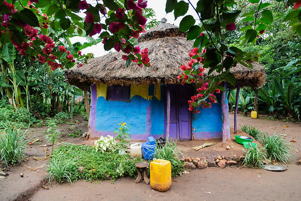 Colorful House in Ari Village