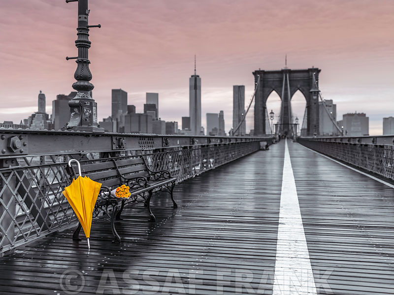 Yellow umbrella and a bunch of roses on bench on Brooklyn bridge, New York