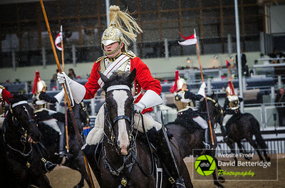 Royal_Windsor_Horse_Show_2017_002