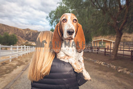 a basset hound looks over the shoulder of his human