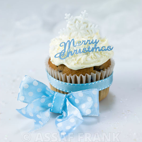 Cupcake with Merry Christmas text