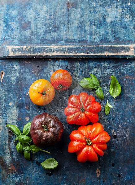 Ripe fresh colorful tomatoes on blue wooden background