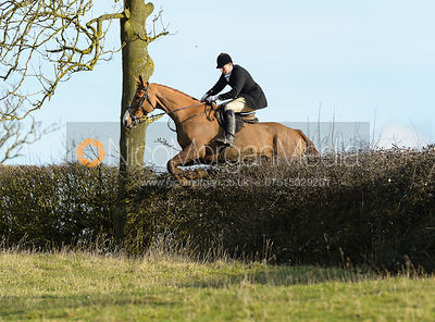 Jeremy Sudlow jumping a hedge near Ladywood - The Cottesmore at Priory Farm