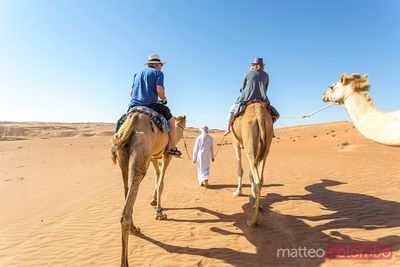Tourists riding dromedaries in the desert of  Wahiba Sands, Oman