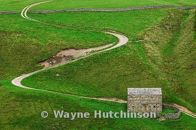 Barn and twisty track up a Dales hillside , North Yorkshire