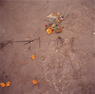 discarded floral offerings at the Kumbh Mela