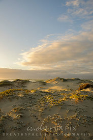 sanddunes at sunrise