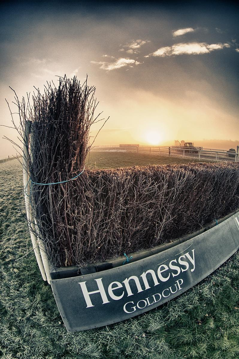 Hennessy Gold Cup 2012
