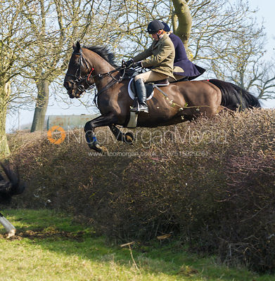 Followers jumping a big hedge near Ladywood