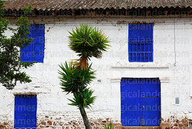 Palm tree and colonial house in Lamay, Sacred Valley, Cusco Region, Peru