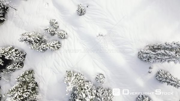 Some snow shots from Col du Marchairuz in the Vallee du Joux region of the Swiss Jura Mountains. Switzerland