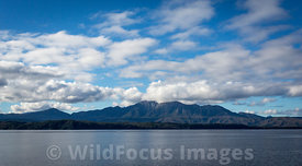 View towards the Franklin - Gordon Wild Rivers National Park from Macquarie Harbour, Tasmania, Australia; Landscape