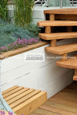 Aromatic plant, garden designer, Low wall, Stair, Terrace, Thyme, Contemporary Terrace, Digital, Grasses