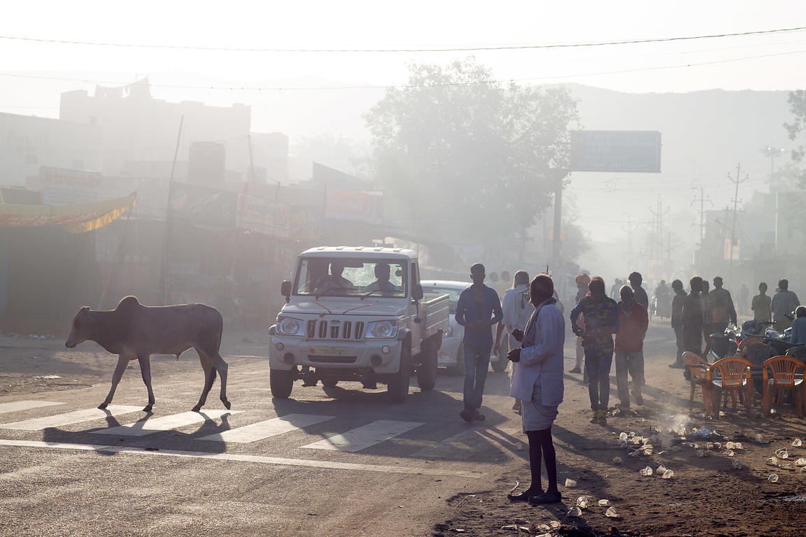 Hazy early morning scene along the main thoroughfare in Pushkar, Rajasthan, India