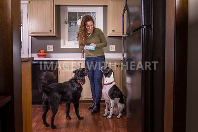 Woman Feeding Happy Dogs in Kitchen