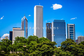 Chicago Skyline with Grant Park Trees Picture