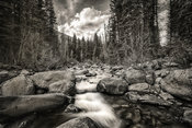 Cascade Creek in Black & White