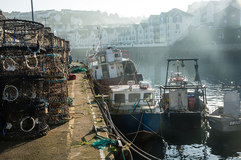 The number of boats in the UK fishing fleet declined by 29% between 1996 and 2017. But fewer boats are catching more fish: In 2004 the UK had the fourth largest catch of any EU country at 652,000 tonnes, by 2014 this had grown to 752,000 tonnes - the second largest in the EU.