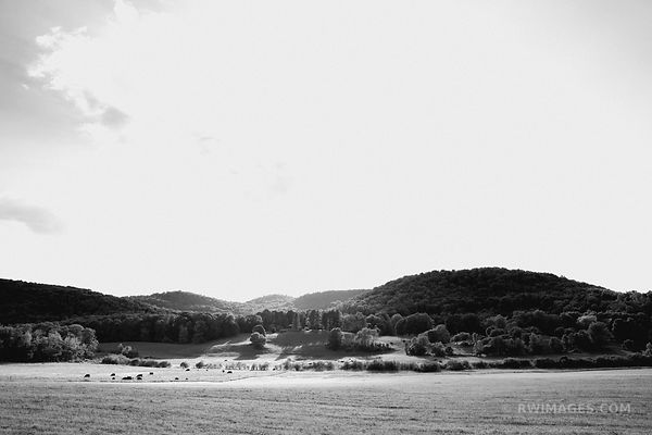 FARMFIELD IN THE VALLEY VERMONT BLACK AND WHITE